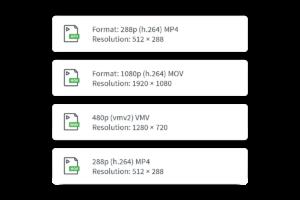 Unterstützte Video CMS Formate